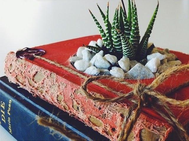 Ideas creativas. Bricolaje Convierte libros viejos en macetas para cactus.